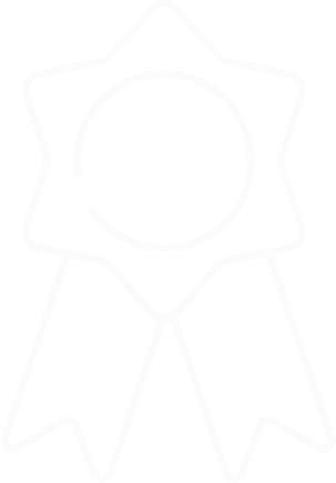 Icon Expertenstandards.